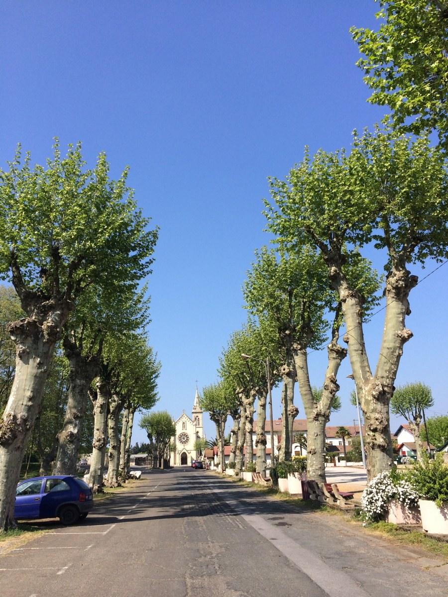 De Tarnos à Bayonne via Boucau (64-40)