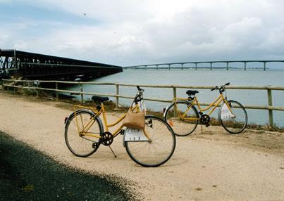 Carte des pistes cyclables de La Rochelle (17)