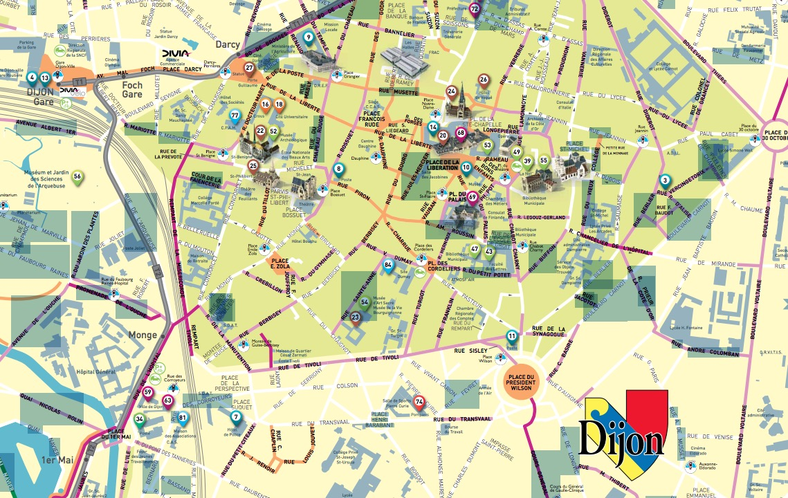 Les pistes cyclables de Dijon (21)